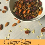 Ginger Snap Granola