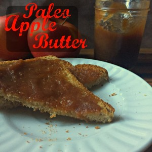 Paleo Apple Butter CV