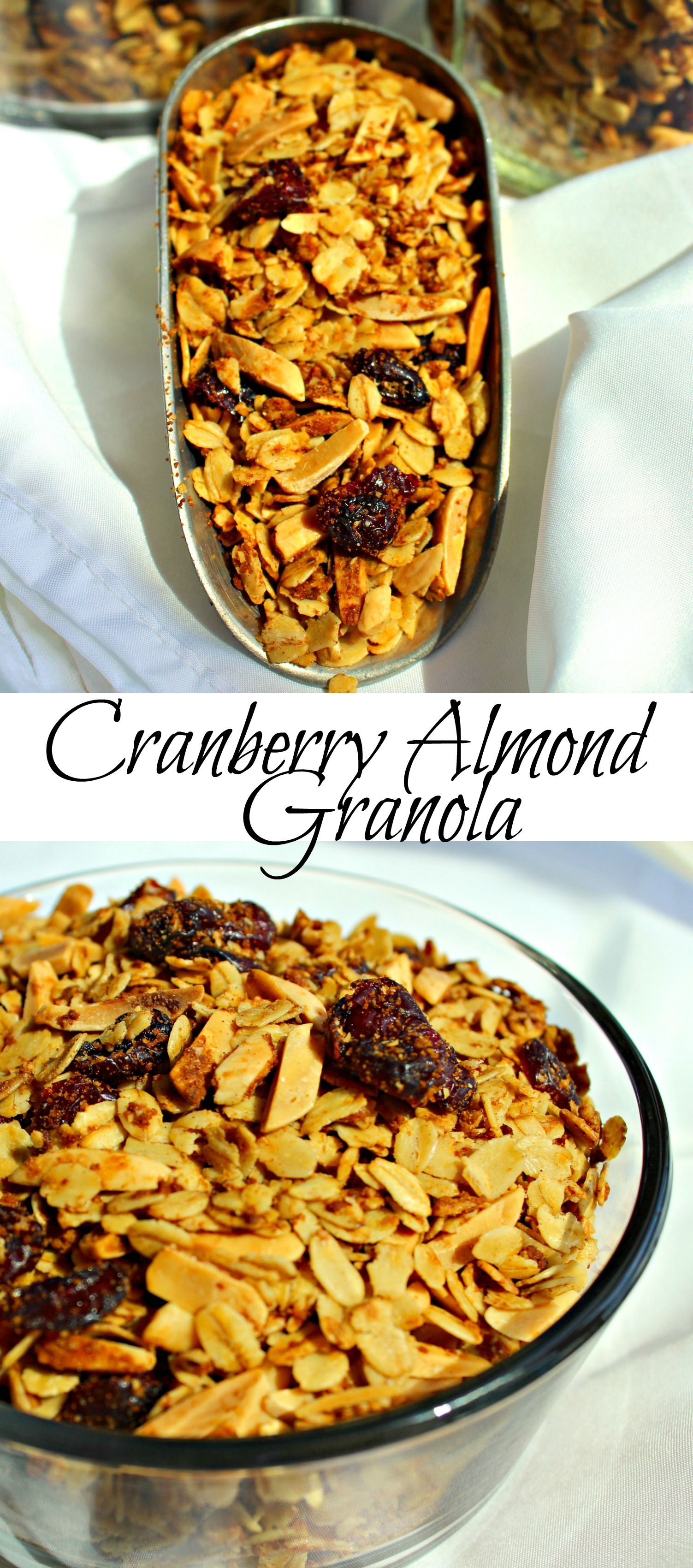 Cranberry Almond Granola Pin